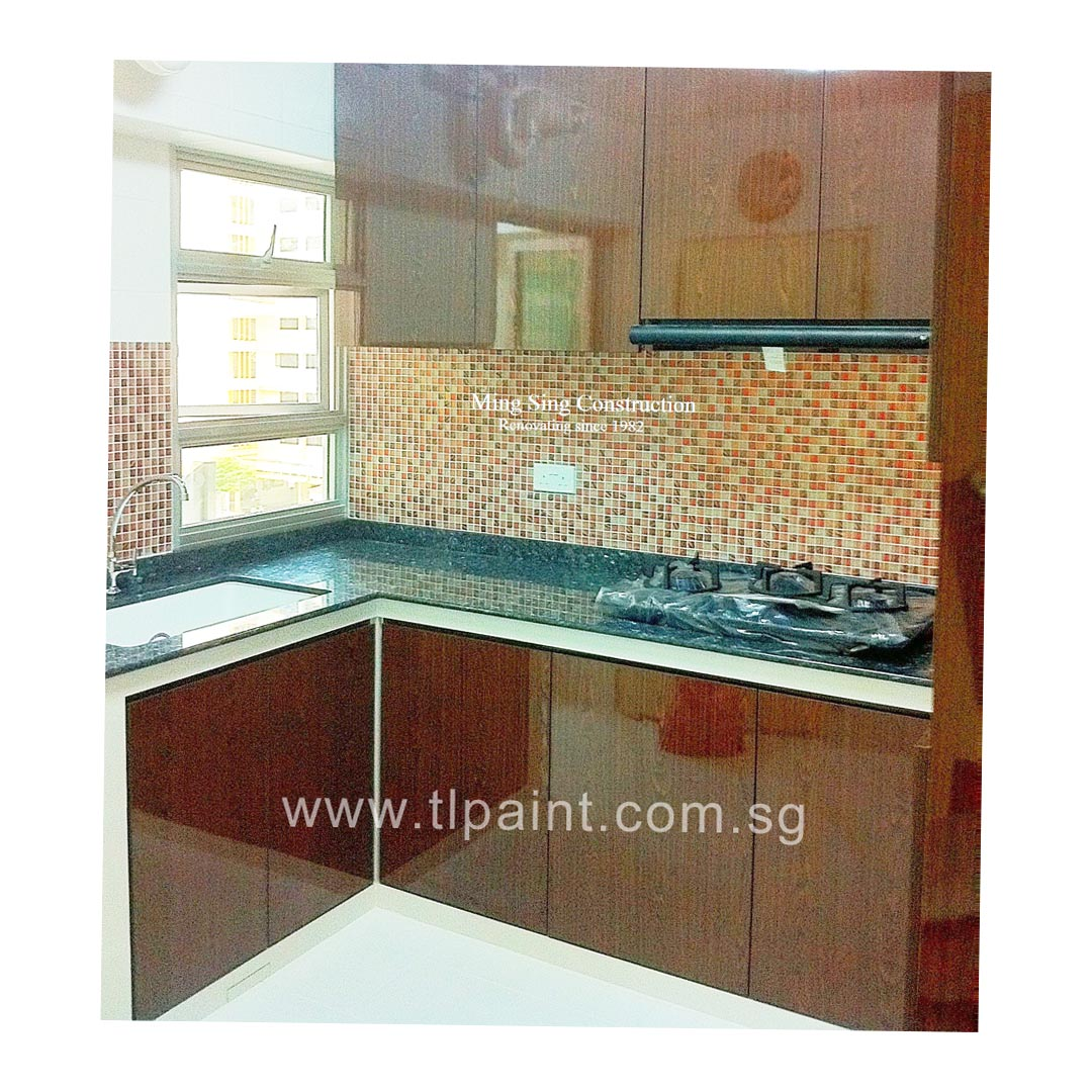 Backsplash Kitchen In Singapore Example Of A Trendy Galley